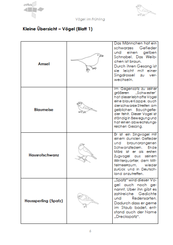 Arbeitsblatt Der Vogel : Vögel im frühling nahrung und brutaufzucht download